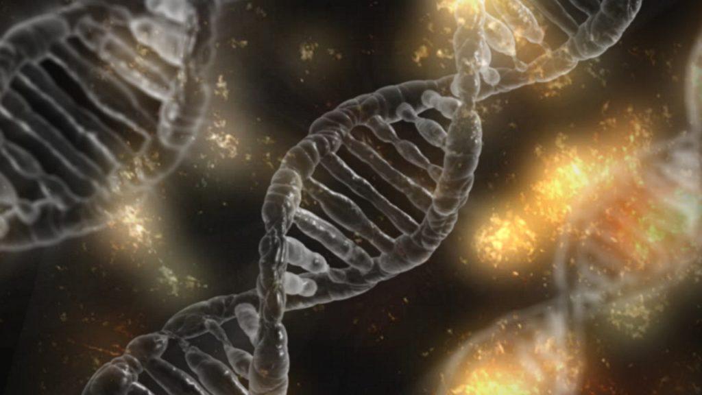 ADN, criopreservación y longevidad